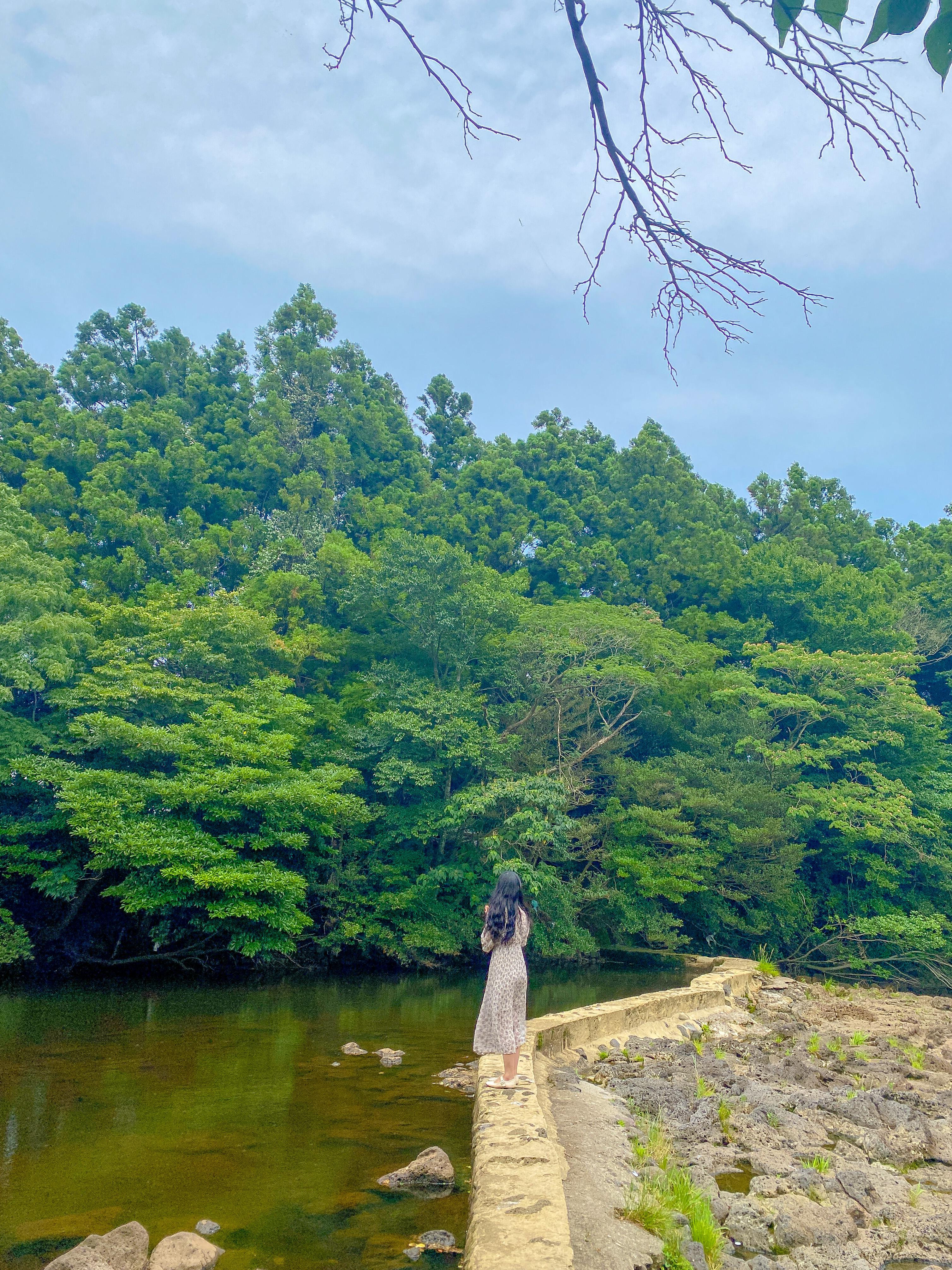 하천을 가로지르는 작은 둑길