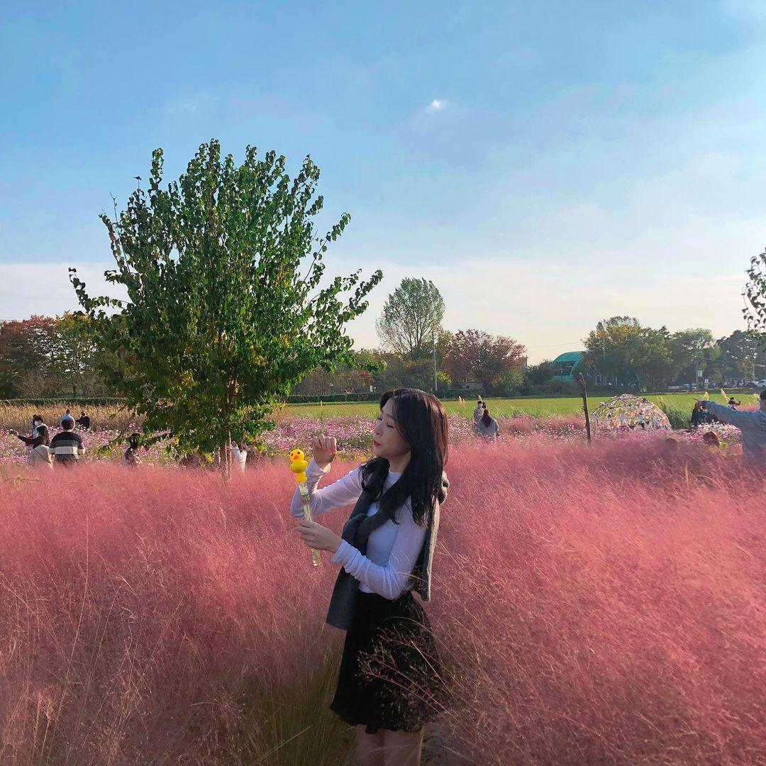 바람새마을 핑크뮬리 꽃밭에서 인증사진