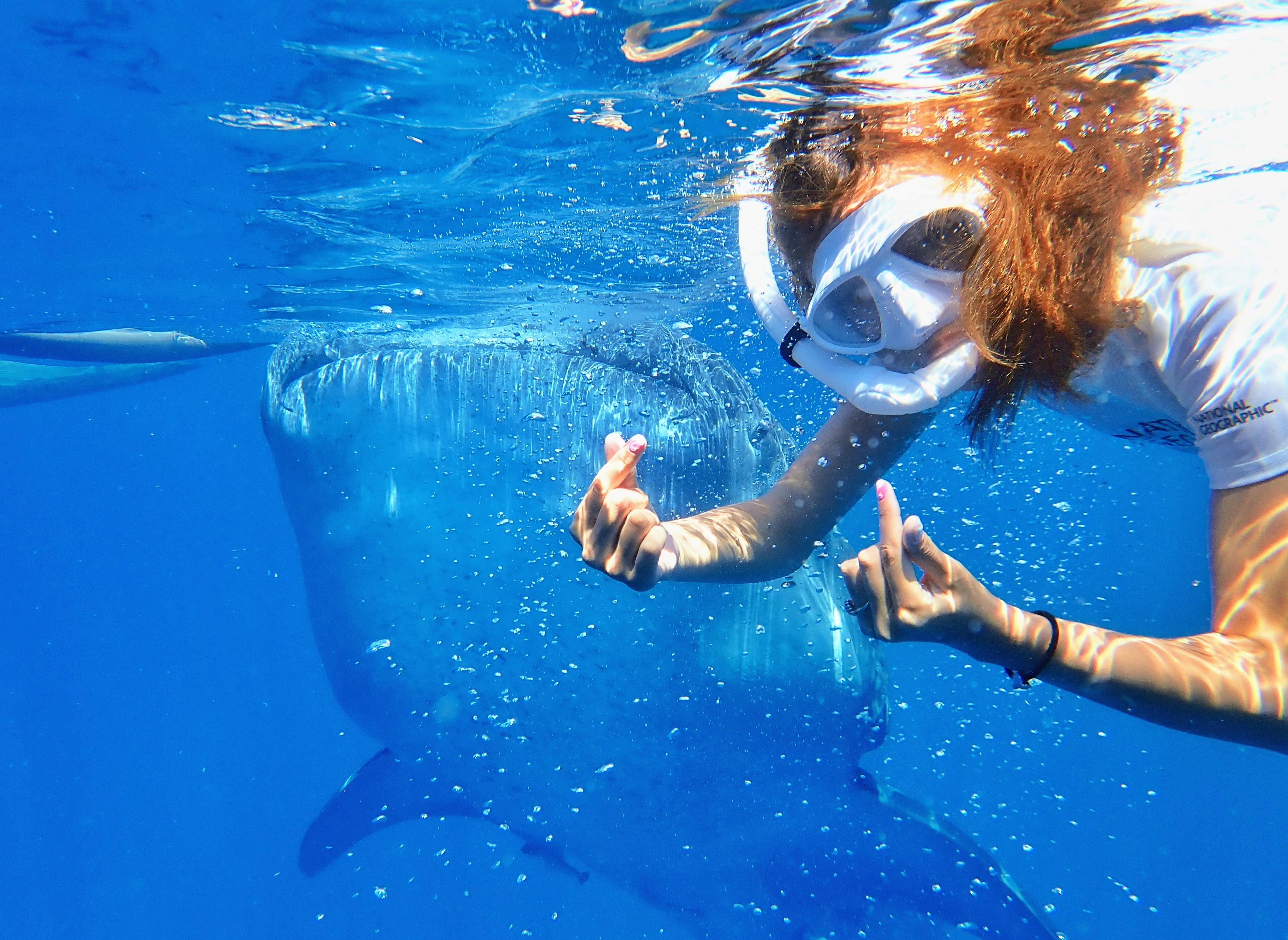고래상어 앞에서 스노클링을 하며 찍은 사진